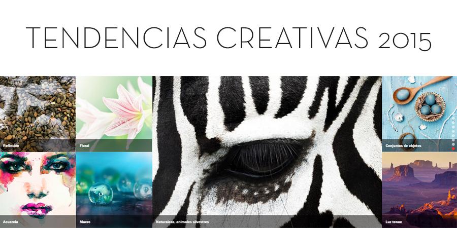 MD Blog Diseño Web: Tendencias 2015 Diseño